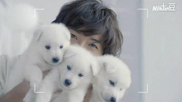 木村拓哉继续代言Nikon 1系列,全新「Nikon 1 J2」CM中和出生两个月的白色小狗共演,以这部高速对焦的新可换镜相机拍下木村和小狗的可爱样子!广告在全白的房间拍摄,女角拿起相机拍他和小狗,完全以女性为广告对象!拍摄期间木村和小狗玩耍,抱著牠们的时候被舔超可爱!新CM 9/6放送。