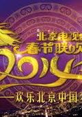 2014北京卫视马年元宵晚会 海报