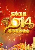 2014年深圳卫视马年春晚 海报