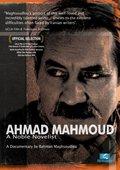 Ahmad Mahmoud: A Noble Novelist 海报