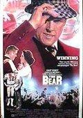 The Bear 海报
