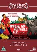 Ivory Hunter 海报