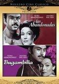 Bugambilia 海报