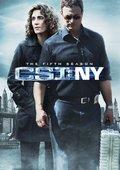 犯罪现场调查:纽约 第五季 海报