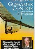 The Flight of the Gossamer Condor 海报