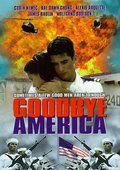 再见美国 海报