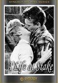 A Life at Stake 海报