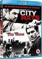城市里的老鼠