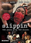 Slippin': Ten Years with the Bloods 海报