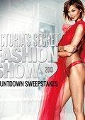 2013年度维多利亚的秘密内衣秀 海报