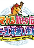 Johnny's Countdown 2013-2014 璺ㄥ勾婕��变�