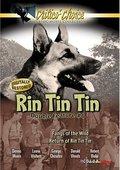 The Return of Rin Tin Tin 海报