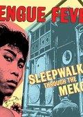 Sleepwalking Through the Mekong 海报