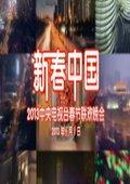 2013年央视春节联欢晚会 海报