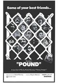 Pound 海报