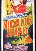 Miraculous Journey 海报