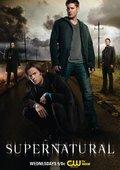 邪惡力量 第八季 海報