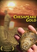 Chesapeake Gold 海报