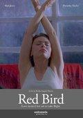 Red Bird 海报