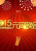 2015央视元宵晚会 海报