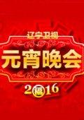 2016辽宁卫视元宵晚会 海报