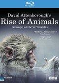BBC:大卫·爱登堡追溯动物之崛起:脊椎动物的成就 海报