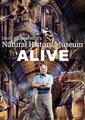 起死回生 大卫·爱登堡探秘自然历史博物馆