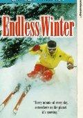 Endless Winter 海报