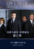 法律与秩序:犯罪倾向 第三季 海报