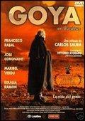 一代名画家戈雅在波尔多 海报