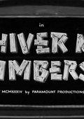 Shiver Me Timbers! 海报