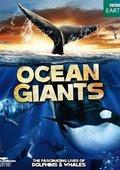 BBC:海洋巨物
