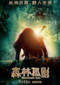 森林孤影 海报