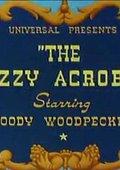 The Dizzy Acrobat 海报