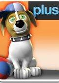 宠物狗 海报