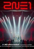 2NE1 2011NOLZA演唱会 海报