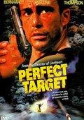 Perfect Target 海报