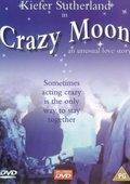 Crazy Moon 海报
