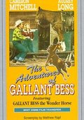 Adventures of Gallant Bess 海报