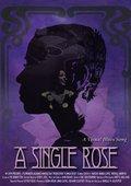 A Single Rose 海报