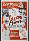Living Venus 海报