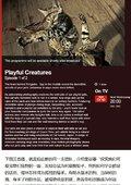 BBC纪录片 宠物:内心狂野 海报