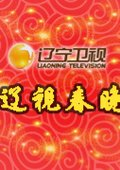 2013年辽宁卫视春节联欢晚会 海报