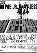 San Bernardo 海报