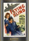 Flying Blind 海报