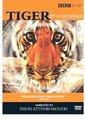 BBC:虎-丛林中窥探