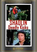 Shaolin Deadly Kicks 海报
