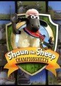 小羊肖恩 冠军羊咩咩