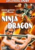Ninja Dragon 海报