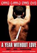 没有爱情的一年 海报